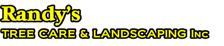 Randy's TREE CARE & LANDSCAPING Inc